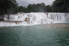 Palenque Agua Azul Falls Cascades-9