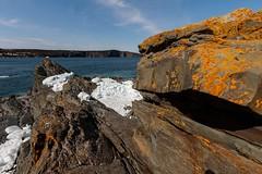 Elements (Karen_Chappell) Tags: ice ocean rock stone lichen nfld newfoundland torbay eastcoasttrail blue orange brown white nature canonefs1022mm wideangle coast seascape landscape atlanticcanada atlantic avalonpeninsula eastcoast rocky rocks