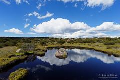 20170301-48-Rock in tarn (Roger T Wong) Tags: australia greatpinetier np nationalpark sel1635z sony1635 sonya7ii sonyalpha7ii sonyfe1635mmf4zaosscarlzeissvariotessart sonyilce7m2 tasmania wha wallsofjerusalem worldheritagearea alpine bushwalk camp clouds hike landscape reflectionrock trektramp walk