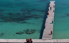 The colorful harbour of Otranto (Tim&Elisa) Tags: puglia italy otranto water mediterraneansea turquoise harbour harbor