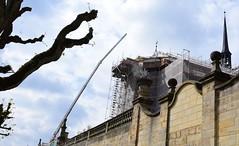 Tentacles in the sky (:Linda:) Tags: germany bavaria franconia town bamberg crane spire tree baretree stone wall michaelsberg church scaffold