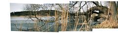 (4niki) Tags: 4niki patrik christian modée sony a7 super takumar f18 55mm stockholm spring tree träd lake svartsjö slott collage