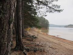 Tiveden in October 2016 (Småland Outdoor) Tags: tiveden vänern vättern national park nationalpark hiking hike hilleberg enan exped lightning