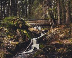 Spring is here again (JH') Tags: nikon nikond5300 nature d5300 water wideangel wood exposure rocks rock trees tree photoshoot photography sigma sweden forest woodland green landscape longexposure colors beautiful bridge naturephotograph travel 2017 spring stream waterfall