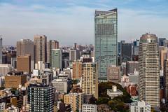 IMG_2608 (Evgeny Gorodetskiy) Tags: birdseye autumn city overlook skyscrapper tokyo japan travel minatoku tōkyōto япония jp
