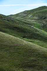 The hills are alive.. (joshhansenmillenium) Tags: nikon photography d5500 hiking adventure nature utah salt lake city antelope island sunset moon animals coyotes buffalo bison mountains tamron 18200mm frary peak great