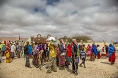 Somaliland_Mar17_1419 (GeorginaGoodwin) Tags: georginagoodwingeorginagoodwinimageskenyakenyaphotojournalistkenyanphotojournalist kenyaphotographer eastafricaphotographer kenyaphotojournalist femalephotographer idps refugees portraits portraitphotographer canon canon5dmarkiii canonphotos drought famine somalia somaliland malnutrition foodsecurity donorfunding aid foodaid wash health sanitation hornofafrica