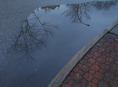 ~~~~~ (Beeke...) Tags: blue reflection puddle abstract rain urban street weather details patterns