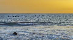 Racing the sun (acase1968) Tags: hawaii outriggers race pacific ocean sunset big island nikon outrigger racing nikkor 24120mm f4g d600 kona