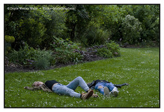 Relaxing in a Park in Paris (Doyle Wesley Walls) Tags: sb bb 0063 girls females women park grass trees relaxation resting jeans denim photograph shanna britney doylewesleywalls