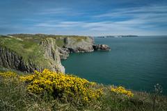 Pembroke Coastal Path (Darryl Hughes) Tags: pembrokeshire coastal path wales cliffs sea flowers sky sony sonya6000