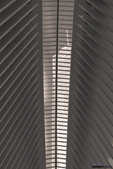 Oculus, World Trade Center, New York (InSapphoWeTrust) Tags: downtownmanhattan lowermanhattan manhattan newyork northamerica usa unitedstates unitedstatesofamerica wtc worldtradecenter us
