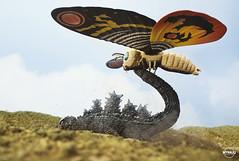 Mothra vs Godzilla (MyKaijuGodzilla.com) Tags: godzilla mothra ゴジラ モスラ モスラ対ゴジラ revoltech cast