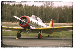 SNJ-4 With A Vintage Look (Chris Parmeter Photography) Tags: snj4 aircraft airplane trainer airport vintage border grain scratches old fuji xt2 18135mm