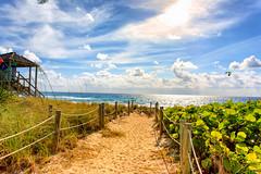 Deerfield Beach, FL (cj13822) Tags: deerfield beach florida canon 5d mark iv 1740mm landscape nature naturephotography landscapephotographt
