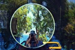 10012554_1145699568780372_8669352175504926690_n (sophiakoni) Tags: reflection mirror trees forrest salamina greece