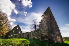 Ruine im Klosterpark Altzella (wiwenir) Tags: 2017 deutschland frühling kloster klosteraltzella ruine