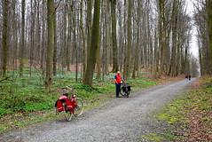 Fietstocht Heverlee - Tervuren - Heverlee (31/03/2017) (Kristel Van Loock) Tags: fietstocht bicycletour heverleetervuren fietstochtnaartervuren vlaamsbrabant vlaanderen visitflemishbrabant visitvlaanderen visitflanders visitvlaamsbrabant visitbelgium touràbiciclette giroinbici belgium belgique belgien belgica belgië belgio tervuren visittervuren seemytervuren vaderdochterdagje