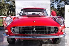 1961 Ferrari 250GT at Amelia Island 2014 (gswetsky) Tags: sports island italian european antique ferrari amelia concours 250gt delegance