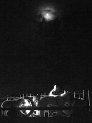 On the Bridge Under The Moon!