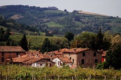 Village in the Toskana (Frhtau) Tags: italien roof people italy house tree field pine contrast buildings landscape countryside europe italia dorf village view wine farm south traditional hill farming culture scene farmer tradition agriculture province toskana