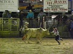 DSCN4431 (Barbwire Gypsy) Tags: cowboys august bull riding rodeo fl kenny rider kissimmee riders ksa 2013 marcuswise skinnykennykline