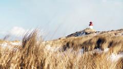 Sylt on the beach (1000LiterFotos) Tags: schnee winter beach strand insel sylt nordsee klte