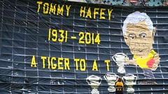 Tommy Hafey pre-game tribute (Seb Ian) Tags: black sports sport yellow football tiger australian australia richmond vale tigers tribute footy australianfootball aussierules afl yellowandblack rfc australianrules yellowblack richmondfootballclub aussiefootball hafey aussiefooty tomhafey
