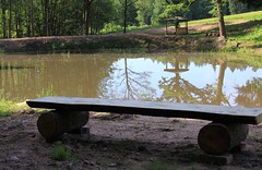 (:Linda:) Tags: germany thuringia village bürden pond reflection handmade bench tree