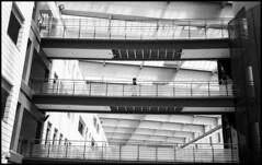 passerelle (Roberto Messina photography) Tags: italy cinema film analog lens kodak xx eastman 2014 sonnar rollei35s