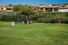 Sombra aprovechada (SantiMB.Photos) Tags: sardegna people tree grass geotagged italia gente rbol ita hierba portorotondo sal18250 vacaciones2013 geo:lat=4102958673 geo:lon=954804182