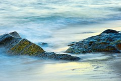 Cape Cod 2014 (cacostello) Tags: longexposure summer dawn capecod niksoftware nikond4 nikkor105mmf28gedifafsvrmicrolens southyarmouthma colorefexpro4