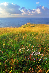 meadow near sea with ruins of bunker (Mimadeo) Tags: ocean old flowers sunset sea sky cloud sunlight color abandoned nature grass clouds sunrise landscape coast spring fort ruin bunker strong fortification fortress vizcaya basquecountry muskiz