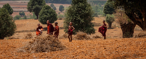 Little monks on way to school