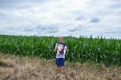 cropwatch (roscoepoet) Tags: lawrence ku kansas dennis dennisabbot