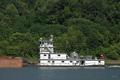 DIANA B. SIEGEL (Joe Schneid) Tags: kentucky transportation louisville towboat inlandwaterway inlandwaterways americanwaterways crounse ohiorivermile619 dianebsiegel