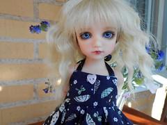 Elsa (the_sweetroll) Tags: kid doll dolls tiny bonnie bjd lonnie abjd bid naias ih balljointeddoll yosd asianballjointeddoll iplehouse iple