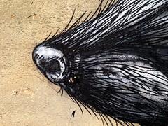 Public Art in Pilsen, Chicago, IL, USA (Ted & John Koston) Tags: usa chicago art wall concrete graffiti rat paint traintracks pilsen il spraypaint publicart tagger 2014 roa koston americanart chicagoartists ratnose pilsenneighborhood devouredrat