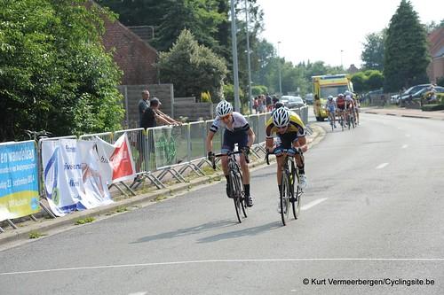 Geel Oosterlo  (298)