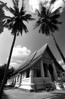 Temple and Trees, Vientiane
