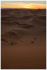 The Last train (keety uk) Tags: ©stuartbennett photokeetynet morroco desert marrakech berber