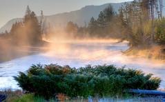 Early Morning, Madison River (klauslang99) Tags: klauslang nature naturalworld northamerica yellowstone national park wyoming usa morning evaporation water river madison ☯laquintaessenza☯