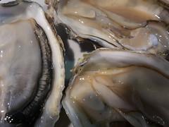 Ostriche e una goccia di limone #ostriche #crostacei #Palermo #Sicilia #Sicily #mare #pesce (siciliabuzz) Tags: sicilia ostriche mare pesce sicily palermo crostacei