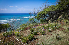 Globalism: One World, One People (kimbar/Thanks for 2.5 million views!) Tags: blue coast flags garden oahu pacific stones trees