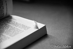 #FlickrFriday #Corner (melimage) Tags: flickrfriday flickr friday corner coin book livre nikon d750 bw black white noir et blanc noiretblanc