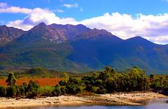 North Owen PEAK..... (Lani Elliott) Tags: nature naturephotography mountain mountainrange northowenpeak mountlyell mountowen colour color colourful australia tasmania queenstown