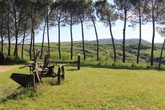 (danielebenvenuti) Tags: aratro campagna country field hill colline toscana tuscany siena italia italy