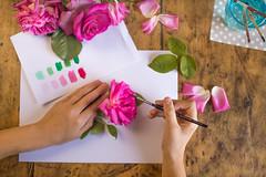 16/52 Poetic - Feliç Sant Jordi!! (Nathalie Le Bris) Tags: cenital fleur flor flower main