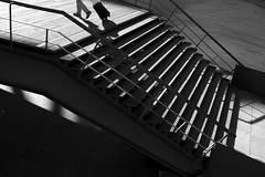 Uma cidade de turistas (Nuno's Photo Warehouse) Tags: 2017 nunofrocha portugal gaia porto pb bw pretobranco blackwhite river rio douro street rua sun sol morning manhã mala viagem bag stairs escadas turismo turism turist turista shadow sombra