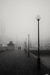 A couple in the fog. (Kimmo Räisänen) Tags: canoneos40d ef40mmf28stm bw blackandwhite monochrome noir helsinki finland scandinavia streetphotography fog foggy